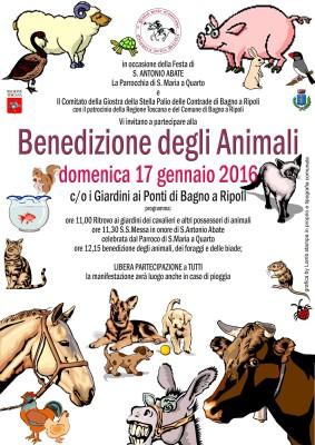 benedizione animali-2016